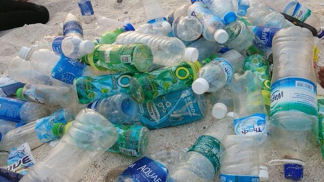 Chàng trai xây nhà từ 6000 chai nhựa trên đảo Bé Lý Sơn - 2