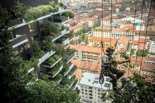 Ngỡ ngàng chung cư phủ kín cây xanh, dân về nhà như đi nghỉ dưỡng - 6
