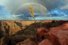 23 bức ảnh thiên nhiên gợi cảm hứng khám phá địa cầu
