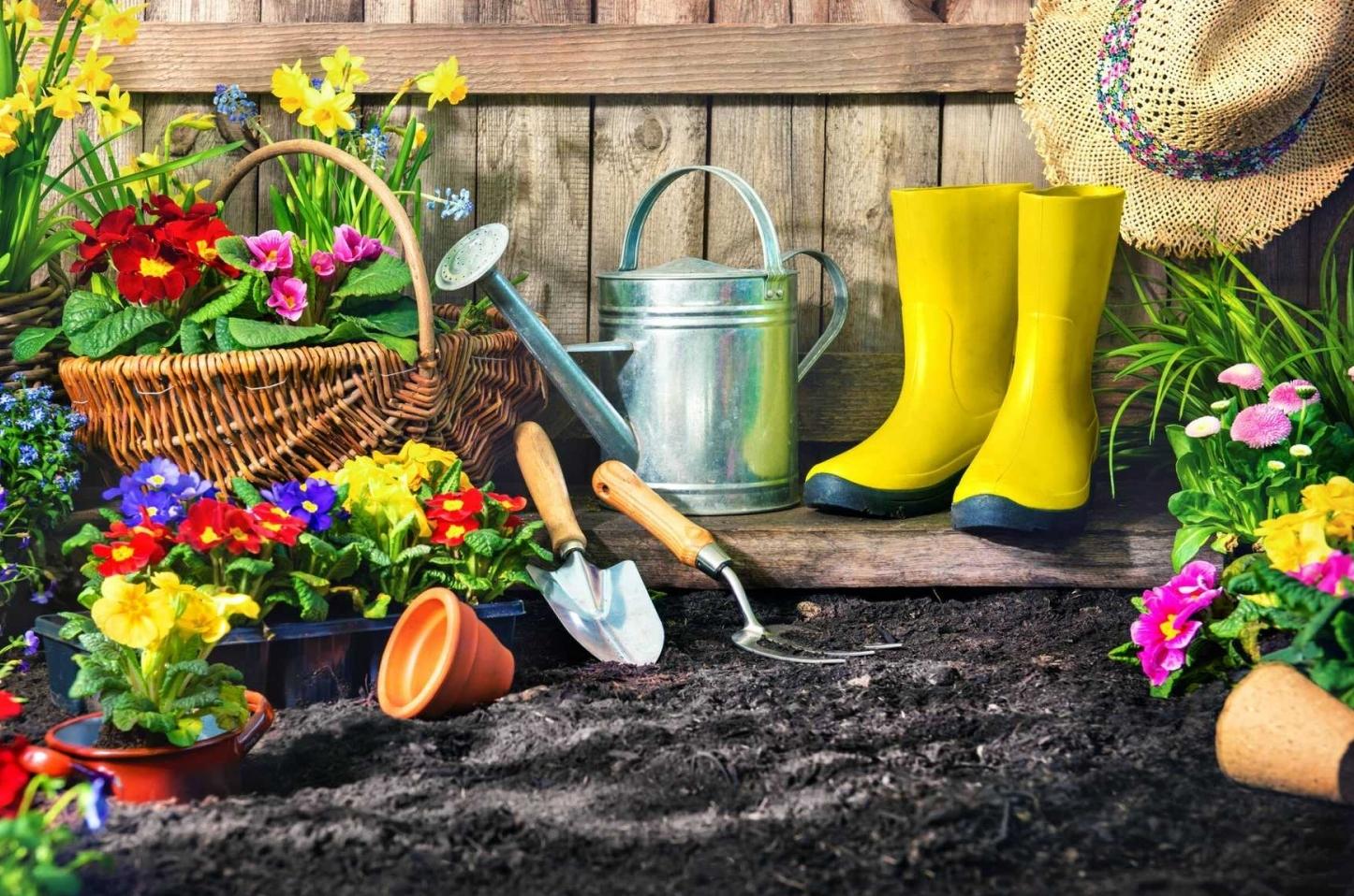 Hạnh phúc đến từ làm vườn