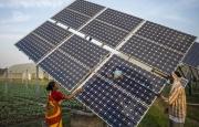 Ấn Độ đẩy nhanh chuyển đổi từ nhiệt điện than sang năng lượng mặt trời