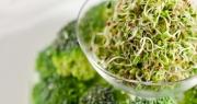 Chuyên gia Nhật chỉ ra loại rau giúp đẩy lùi bệnh gan, ngăn ngừa ung thư