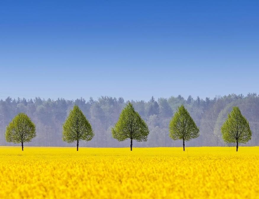 Thiên nhiên tươi đẹp, sống động qua các tác phẩm đoạt giải nhiếp ảnh
