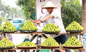 Những làng quả ngọt