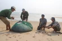 Cá biển ở 4 tỉnh miền Trung hiện vẫn chưa ăn được