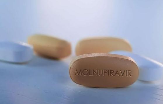 Thuốc kháng virus Molnupiravir có tỷ lệ âm hóa virus cao