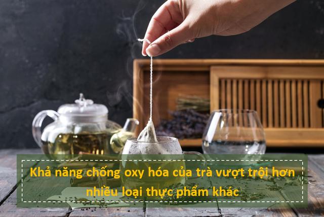 nhung su that bat ngo ve kha nang chong ung thu cua nuoc tra