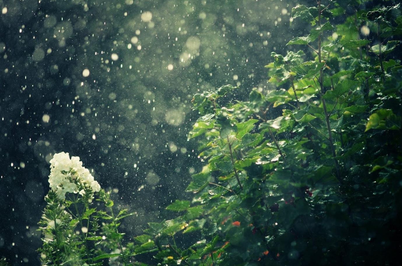 Thời tiết hôm nay ngày 25/9/2021: Bắc Bộ mưa rào và dông rải rác