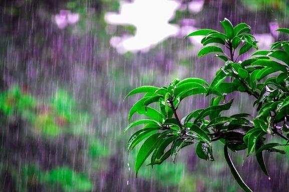 Thời tiết hôm nay ngày 26/9/2021: Bắc Bộ mưa rào và dông