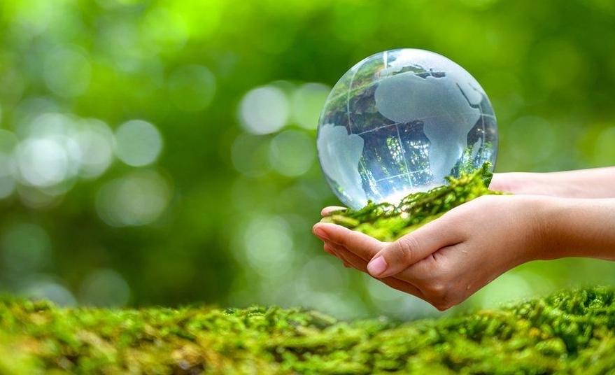 Tương lai bền vững trong cuộc chiến chống biến đổi khí hậu