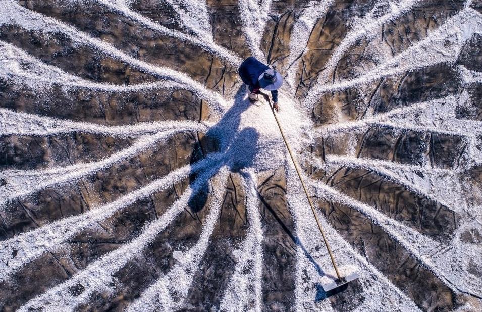 Những khoảnh khắc ấn tượng trên cánh đồng muối Bạc Liêu