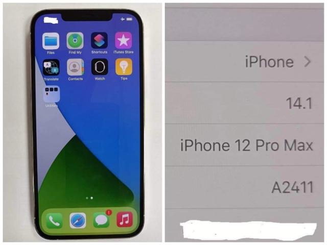 iPhone 12 Pro Max bất ngờ xuất hiện ở Việt Nam trước ngày mở bán - 1