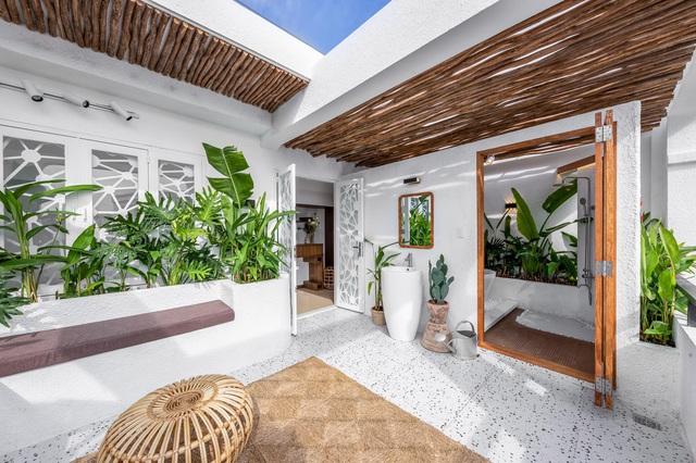 Chàng trai Sài Gòn chi 300 triệu đồng trang trí nhà bằng 50 loại cây độc lạ - 7