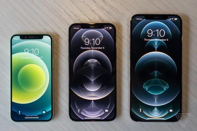 Cận cảnh bộ đôi iPhone 12 mini và 12 Pro Max - Khác biệt lớn về kích cỡ - 1