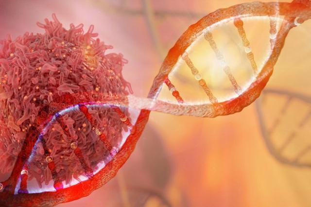 Thay đổi lối sống và chế độ ăn như thế nào để ngừa ung thư? - 1