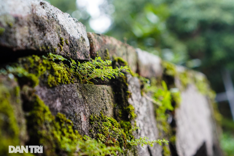 Chiêm ngưỡng ngôi đình cổ 1.500 tuổi ở Hà Nội - 12