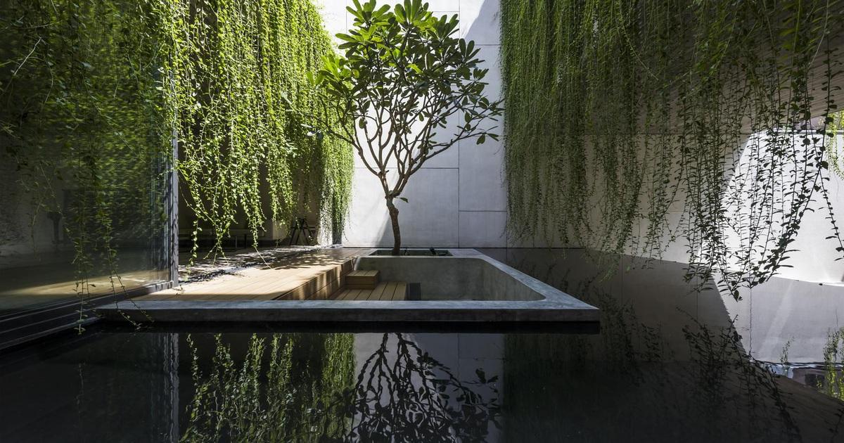 Ngỡ ngàng với biệt thự đẹp như công viên nhờ vườn cây xanh mát