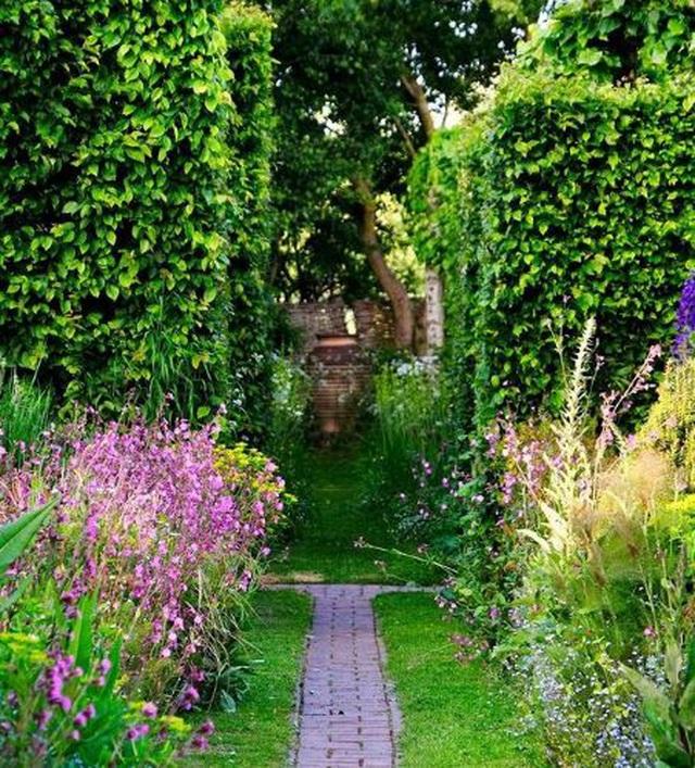 Nam MC nổi tiếng biến đất hoang thành vườn xanh tươi mát mắt, hoa nở 4 mùa - 2