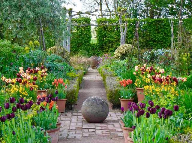 Nam MC nổi tiếng biến đất hoang thành vườn xanh tươi mát mắt, hoa nở 4 mùa - 3