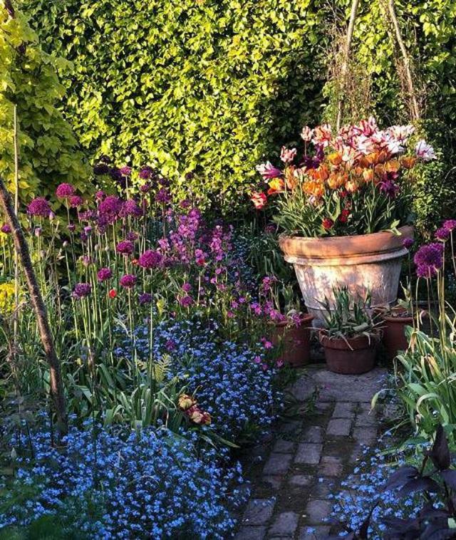 Nam MC nổi tiếng biến đất hoang thành vườn xanh tươi mát mắt, hoa nở 4 mùa - 13