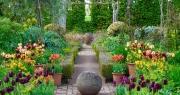 Nam MC nổi tiếng biến đất hoang thành vườn xanh tươi mát mắt, hoa nở 4 mùa