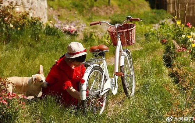 Cuộc sống như mơ của cô gái bỏ bộn bề thành phố về quê làm vườn trồng hoa - 11