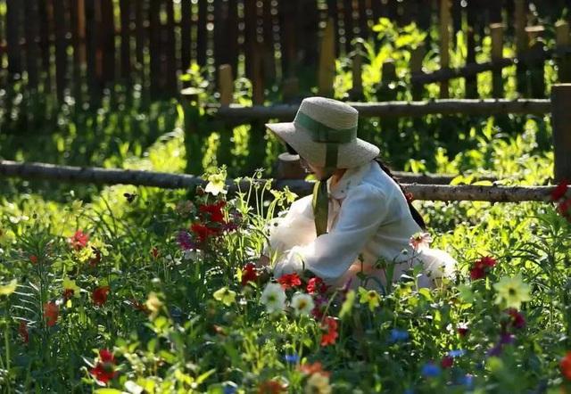 Cuộc sống như mơ của cô gái bỏ bộn bề thành phố về quê làm vườn trồng hoa - 10