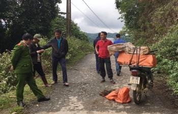 Xe máy chở hàng chục động vật hoang dã bị bắt giữ
