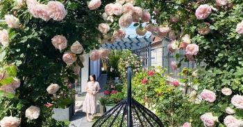Choáng ngợp vườn hồng ngoại đẹp như cổ tích của vợ chồng Việt ở trời Tây