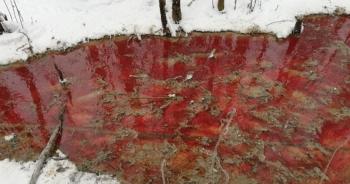 """""""Dòng sông máu"""" gây xôn xao cộng đồng mạng ở Nga"""