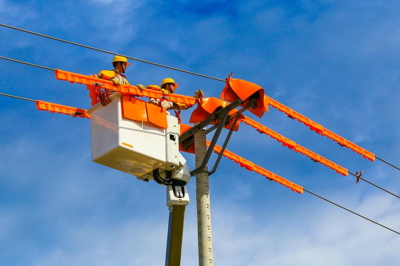Công nhân EVN sửa chữa đường dây truyền tải điện