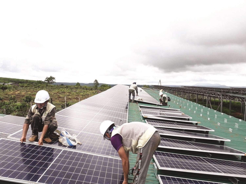 Đầu tư, lắp đặt điện mặt trời tại các trang trại