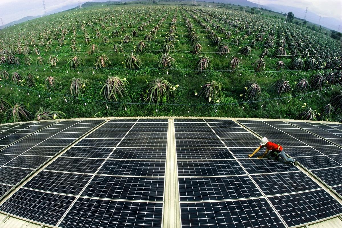 Kẽ hở trong đầu tư điện mặt trời