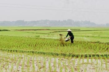 Tháo gỡ khó khăn cho ngành nông nghiệp