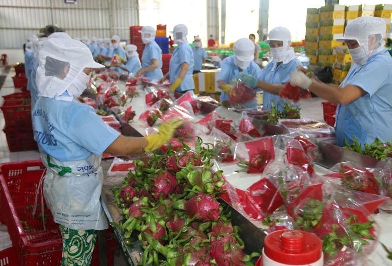 Tiếp tục xét nghiệm virus SARS-CoV-2 trên nông sản, hàng hóa của Việt Nam