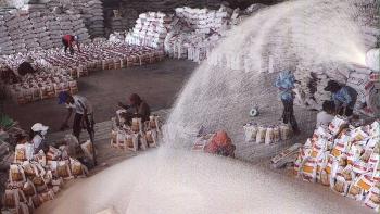 """Vì sao xuất khẩu gạo trở nên """"ảm đạm""""?"""