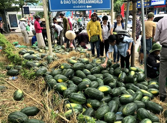 Mạnh tay đầu tư công nghệ nhưng giá trị xuất khẩu nhiều nông sản Việt vẫn giảm sâu