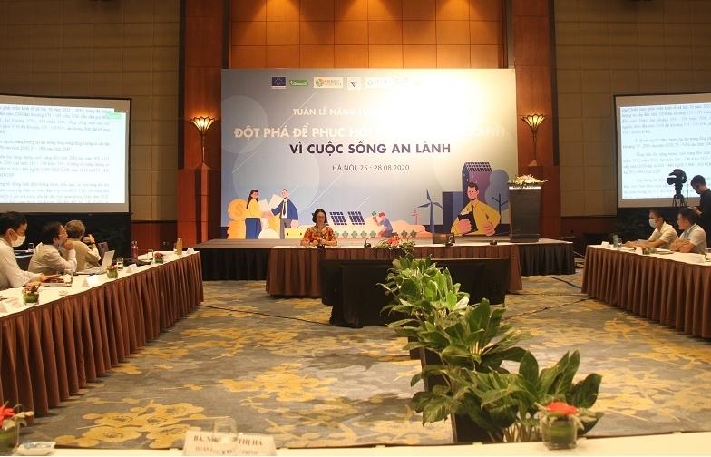Việt Nam đang dẫn đầu về tăng trưởng năng lượng tái tạo trong khu vực ASEAN