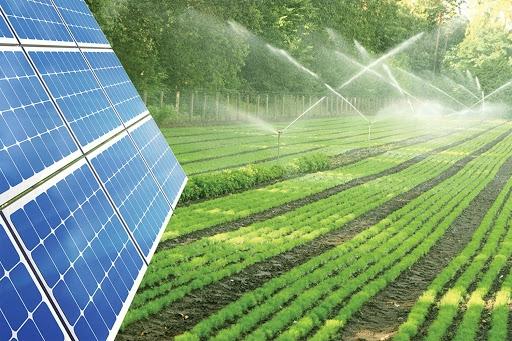 Điện mặt trời kết hợp nông nghiệp và thủy sản đang gặp nhiều trởngại