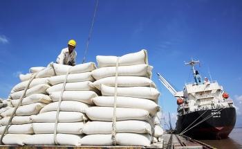 Vượt qua những yêu cầu nghiêm ngặt, 9 loại gạo Việt sắp có mặt tại EU
