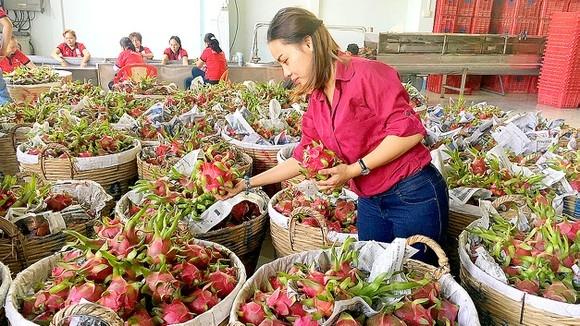 Xuất khẩu rau quả 9 tháng đạt 2,5 tỷ USD