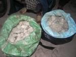 Bắt vụ vận chuyển 50kg thuốc bom từ Lào về Việt Nam