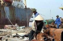 phat ngan voi hang ngan container phe lieu nhap khau vo chu