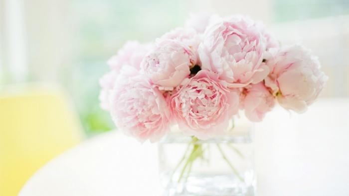 loai hoa bieu trung cho 12 con giap