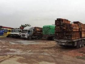 Bắt đoàn xe chở gỗ quá tải đến 651%