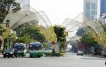 TP HCM: Tạm cấm xe trên đường Hàm Nghi