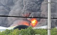 [Chùm ảnh] Công ty nệm chìm trong 'biển lửa'