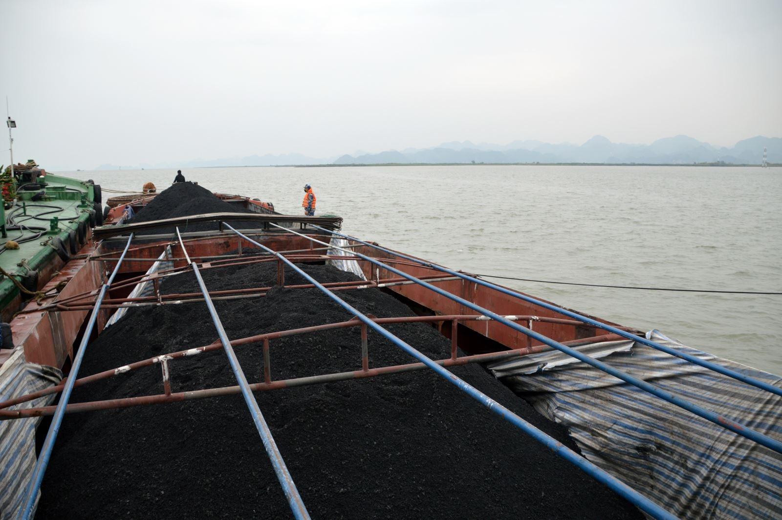Thu giữ 500 tấn than trên biển không rõ nguồn gốc