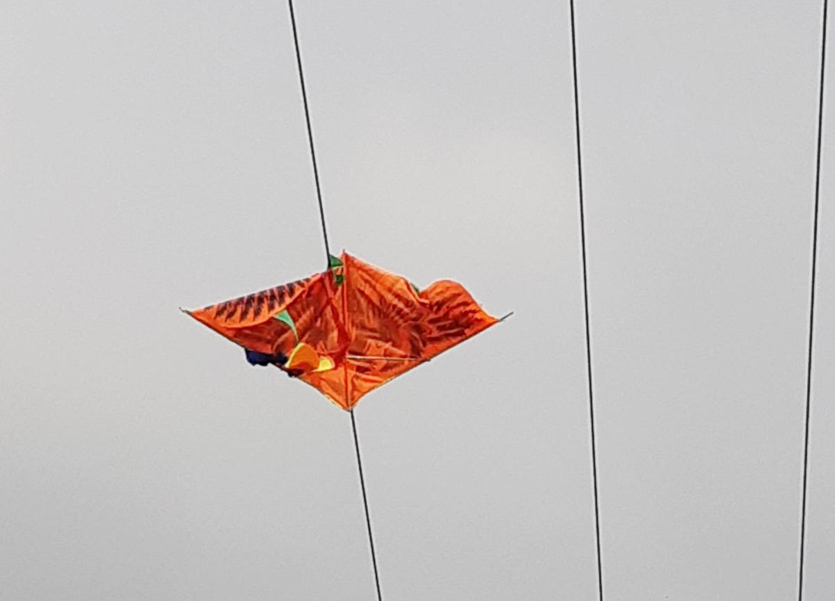 Cảnh báo thả diều gây mất an toàn lưới điện ở Đoan Hùng, Phú Thọ