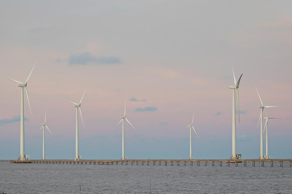 Tiềm năng lớn, Hà Tĩnh muốn chuyển đổi rừng tự nhiên làm năng lượng tái tạo
